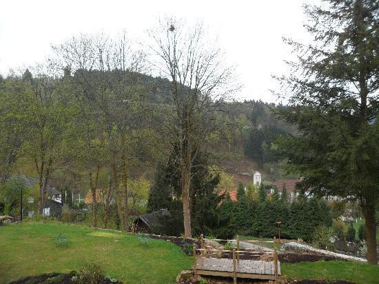 Hostellerie La Cheneaudiere - Relais & Chateaux: vue exterieur