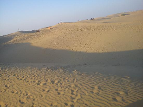 Le Royal Camps : the desert