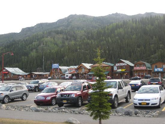 Denali Princess Wilderness Lodge: Across the HWHY from the lodge