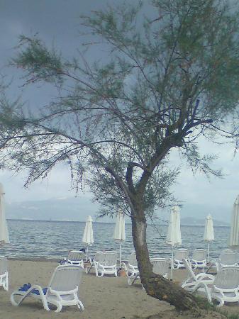 Mayor Capo Di Corfu: beach