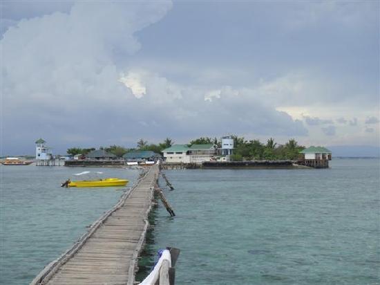 Nalusuan Island Resort: vue d'ensemble de l'ile