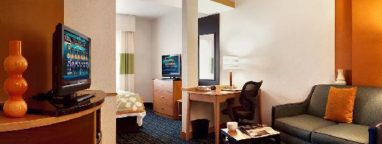 Fairfield Inn & Suites Santa Rosa Sebastopol: Studio King