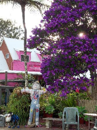 Tamborine Mountain, Australië: another wonderful shop on  Gallery Walk, Eagle Heights