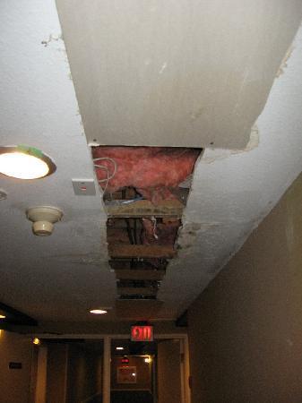كاساندرا هوتل: The ceilings in the hallways.