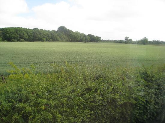 Great Snoring, UK: View from Wells room
