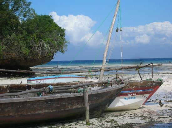 Kizi Dolphin Lodge: Boat