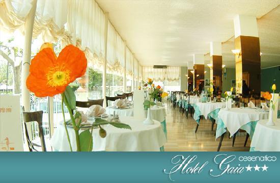 Cucina Hotel Gaia - Picture of Gaia, Cesenatico - TripAdvisor