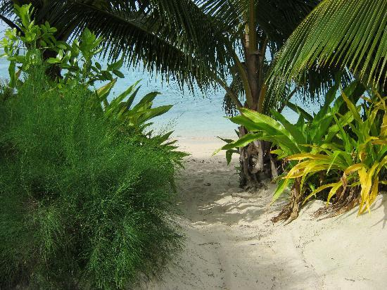 Palm Grove: Private beach entry from Matenga Bungalow