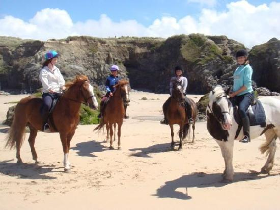 Cornish Riding Holidays: At the Beach
