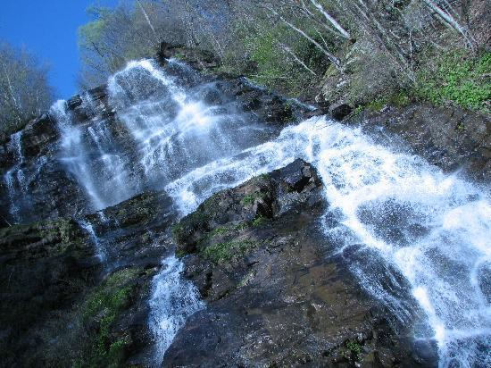 Amicalola Falls State Park: Pictures of the falls