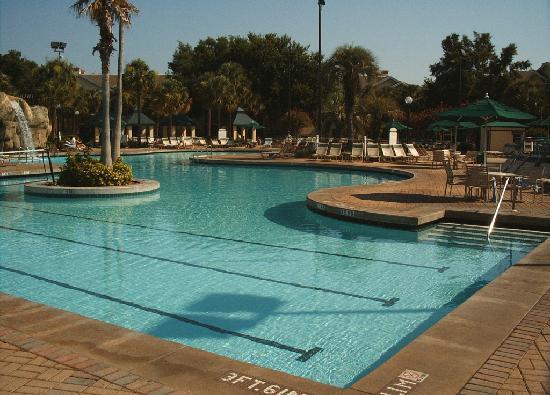 Sheraton Vistana Resort - Lake Buena Vista : the pool at Fountains