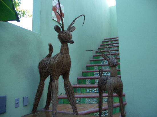 Casa Verde Inn: le scale che portano alla camera GIALLA..