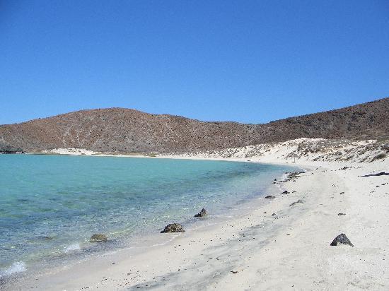Casa Verde Inn: Playa Balandra