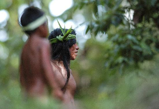 Huaorani Ecolodge: Rainforest Explorations with the Local Community
