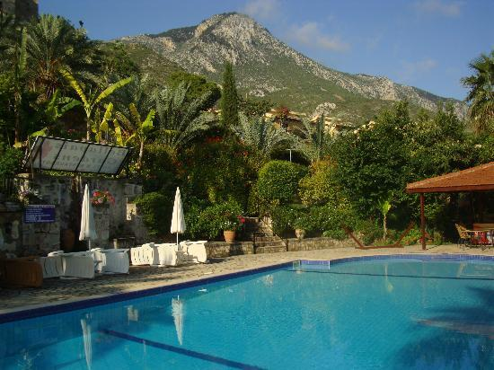Bellapais, Cyprus: The Pool