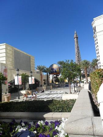 View from our premium fountain view room at planet - Planet hollywood las vegas swimming pool ...