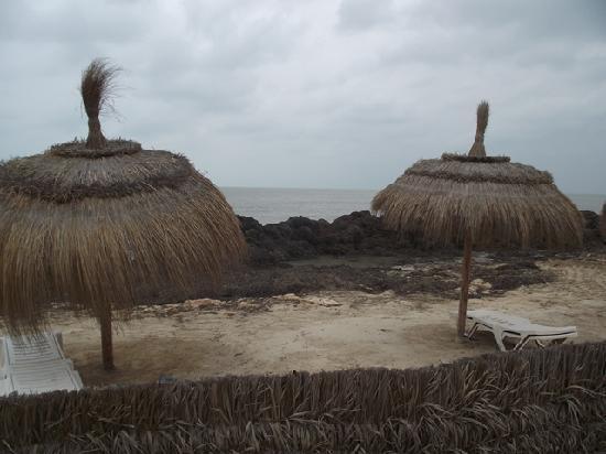El Mouradi Djerba Menzel: Schöne Aussicht am Strand