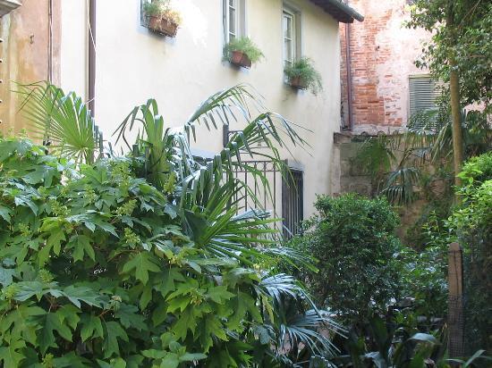 La Magnolia B&B: Courtyard