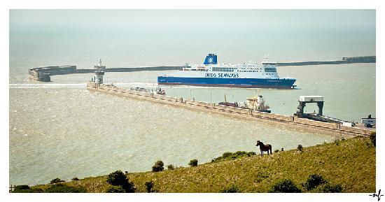 White Cliffs of Dover: White Cliffs Dover Harbour