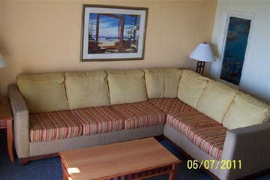 Dolphin Inn: Our brand new couches and carpet in all our living rooms