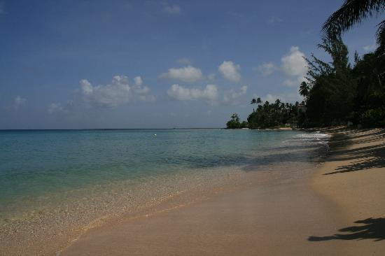 Speightstown, Barbados: The beach