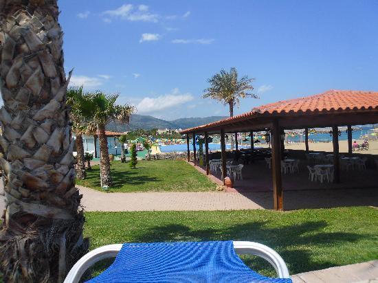 Phaedra Beach Hotel: pool view