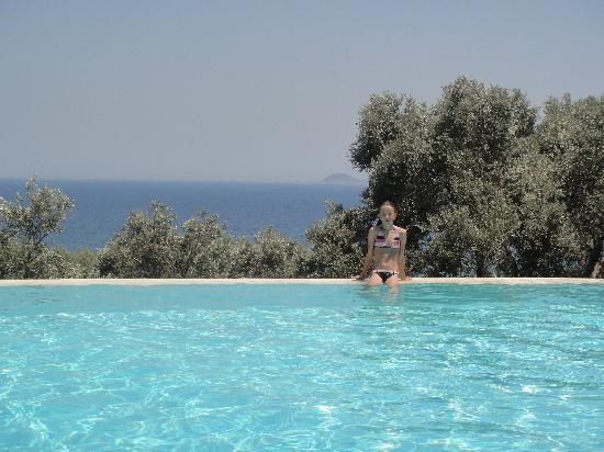 Armonia Bay Hotel: The swimming pool