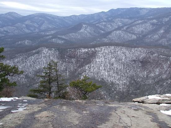 Pisgah Forest, Kuzey Carolina: View from the top!