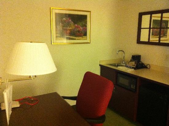 سبرنجهيل سويتس باي ماريوت فيلادلفيا: More Dated Furniture 