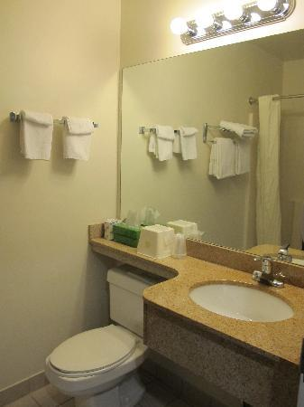 BEST WESTERN White Mountain Inn: bathroom