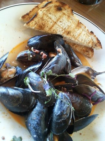 Avalon Grille: Steamed Black Mussels