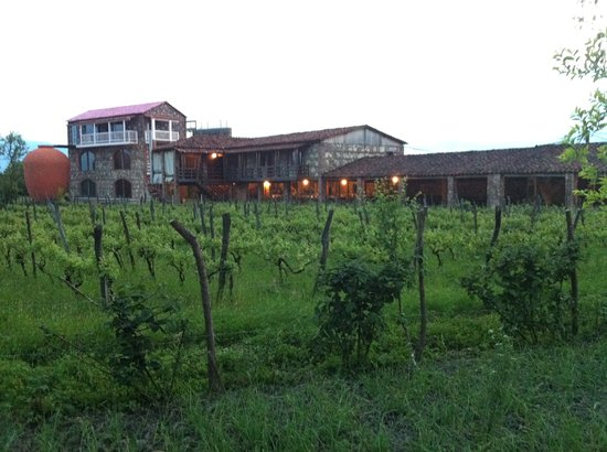 Napareuli, جورجيا: The winery as you enter from the road