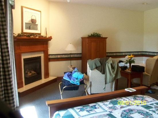 Oak Ridge Inn: The patio is left of the fireplace.The armoire has a small flat screen t.v. in it also a video o