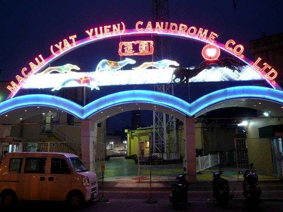 Macau (Yat Yuen) Canidrome: レース場入口
