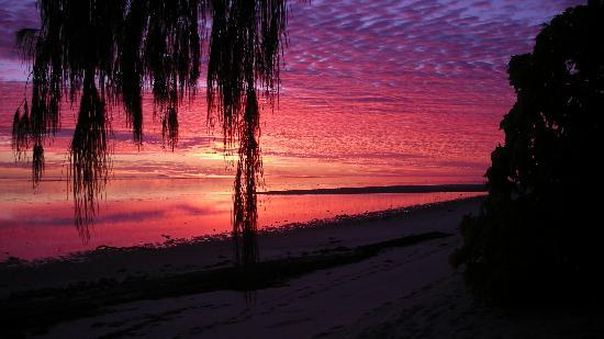 Heron Island Resort: Sunrise