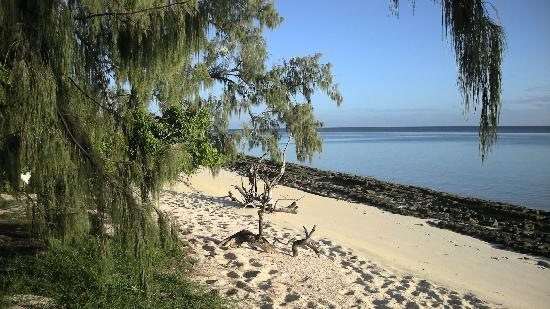 Heron Island Resort: Near The Beach House