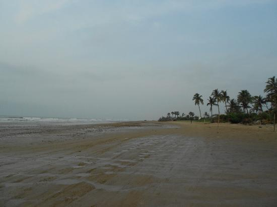 Neel Nirjaney: Avoid driving on the beach; its sticky