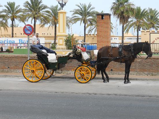 Hotel Las Palmeras: on the front