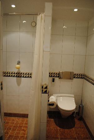 Shower And Very Funny Toilet Bidet Picture Of Hotel Saratz