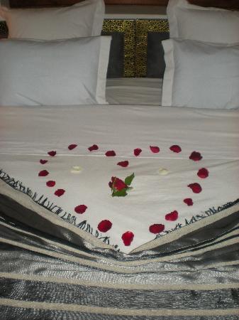 Riad RabahSadia: acceuil romantique pour une lune miel
