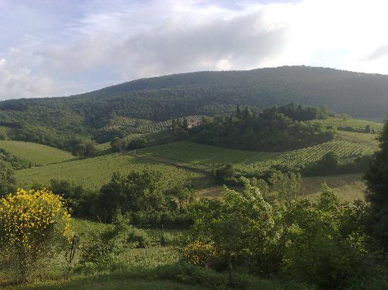 Villa del Sole: vista