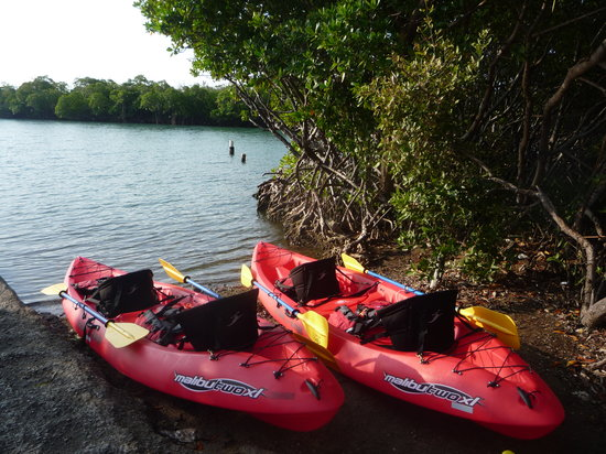 Excursiones Ecoboriken Inc.: Our Kayaks are waiting for you !!