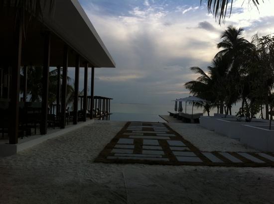 Dhevanafushi Maldives Luxury Resort Managed by AccorHotels: pool