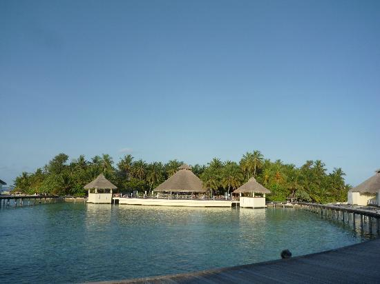 Ellaidhoo Maldives by Cinnamon: The view from the door of 412