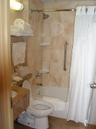 Holiday Inn Express New York City: Pretty bathroom