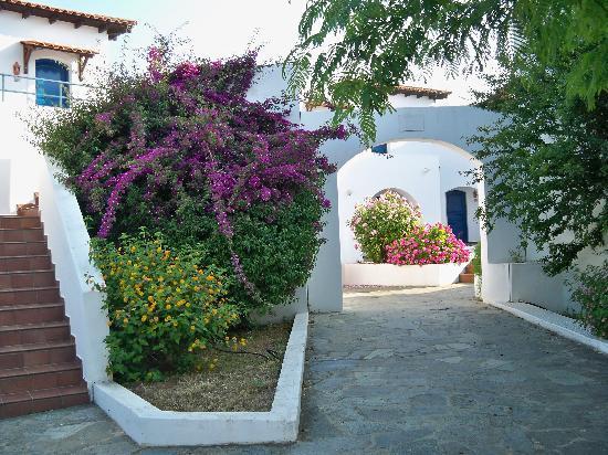 Eretria Village Resort & Conference Center: Bouganville