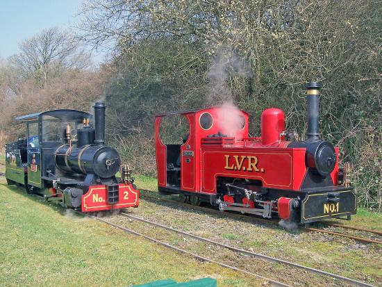 Newquay, UK: Our steam engines , Muffin and Zebedee
