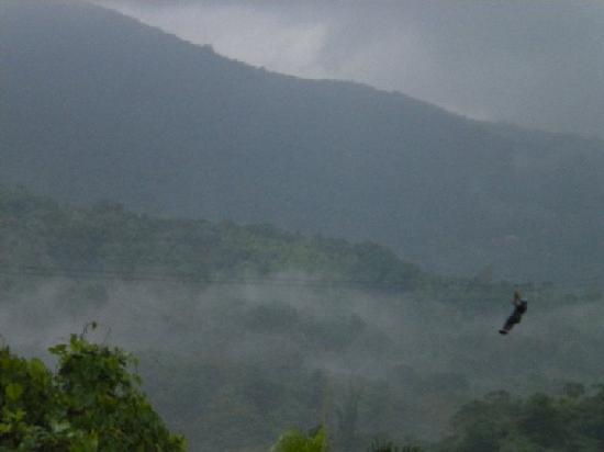 Luquillo, Puerto Rico: Last zipline