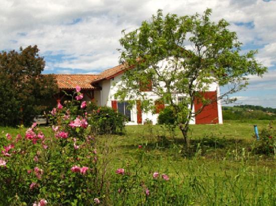 Maison Iribarnia : environnement du gite Iribarnia