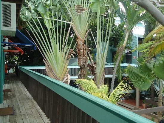 La Jamaca: Our place